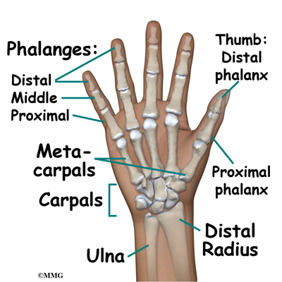 What Are the Causes of Metacarpophalangeal Joint Pain?