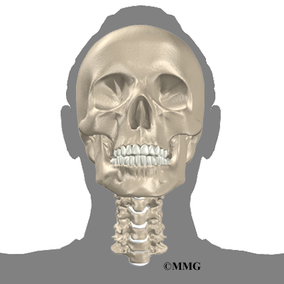 Anterior Cervical Discectomy And Fusion Eorthopod