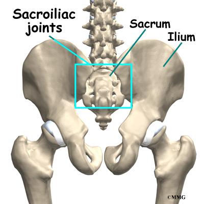 Skeleton diagram sacroiliac application wiring diagram sacroiliac joint injections eorthopod com rh eorthopod com sacroiliac joint injection sacroiliac joint anatomy ccuart Choice Image