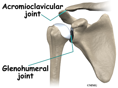 Weightlifters Shoulder Eorthopod